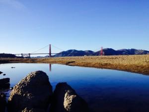 Da! Wunderschön, wie sich die Golden Gate Bridge in einer Pfütze spiegelt