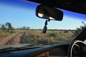 Mit dem eigenen Auto auf Safari