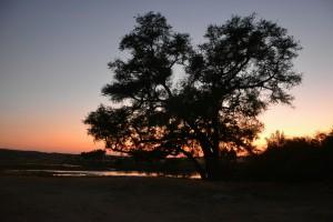 Sonnenuntergang im Nationalpark